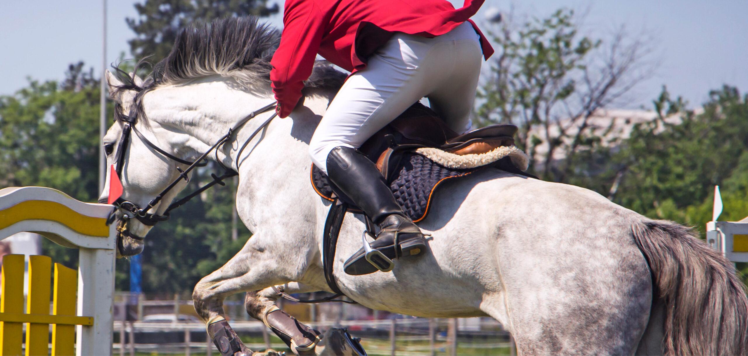 Häst och ryttare hoppar hinder på tävling