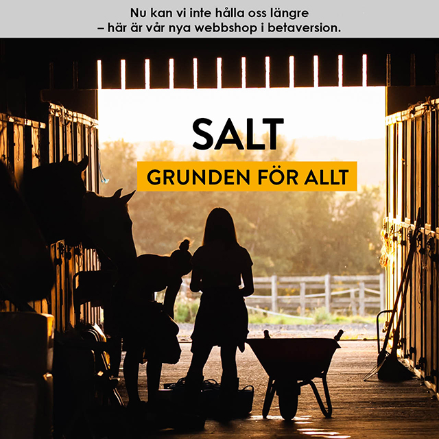 Salt - grunden till allt!